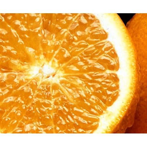 Potravinárske aróma 20ml - POMERANČ