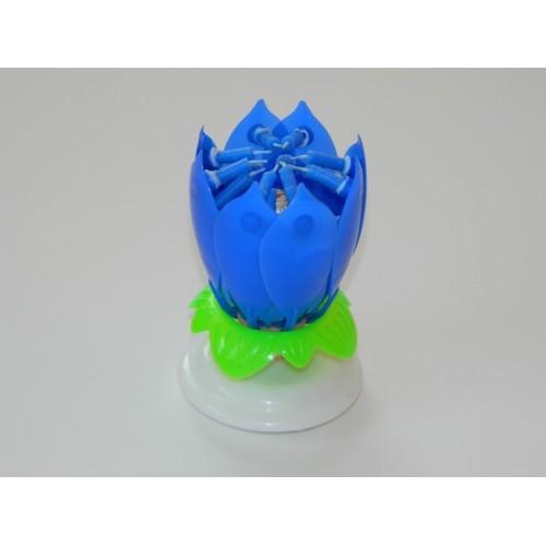Spievajúci lotosový kvet modrý