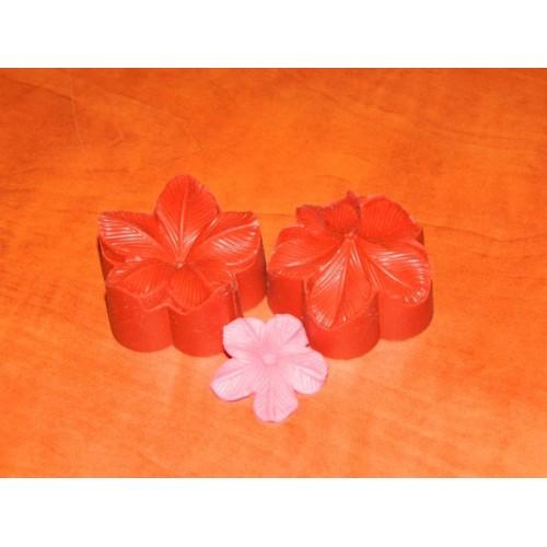 Žilkovač květina 3