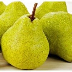 Flavouring 20 ml  - PEAR